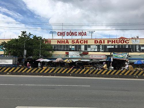 ban-nha-dong-hoa-di-an